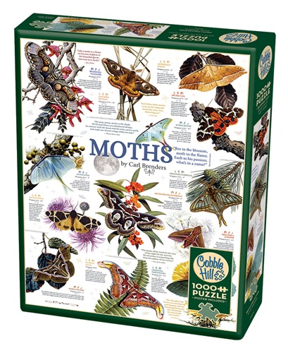 rgb-80016-moth-collection-pkg