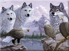 r-06845_wolves-eagles